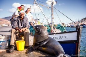 A man and his seal