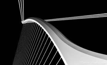 Samuel Beckett Bridge B&W